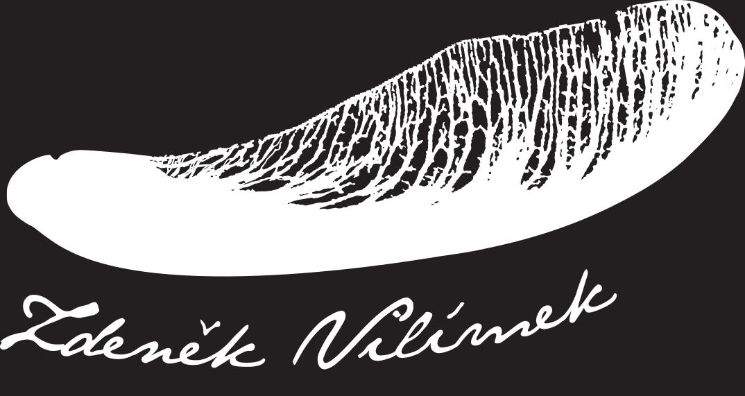 Zdeněk Vilímek logo